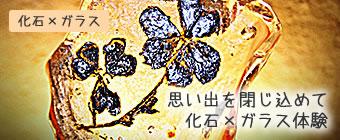 化石×ガラス 思いでを閉込めて化石×ガラス体験 沖縄恩納村