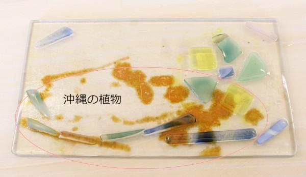 IMG_濱田2
